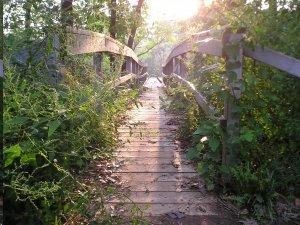 present pathway