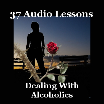 Banner 37 Audio Lessons